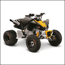 BRP Can-am DS 90 X
