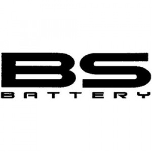 BS-BATTERY (3)
