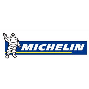 MICHELIN (51)